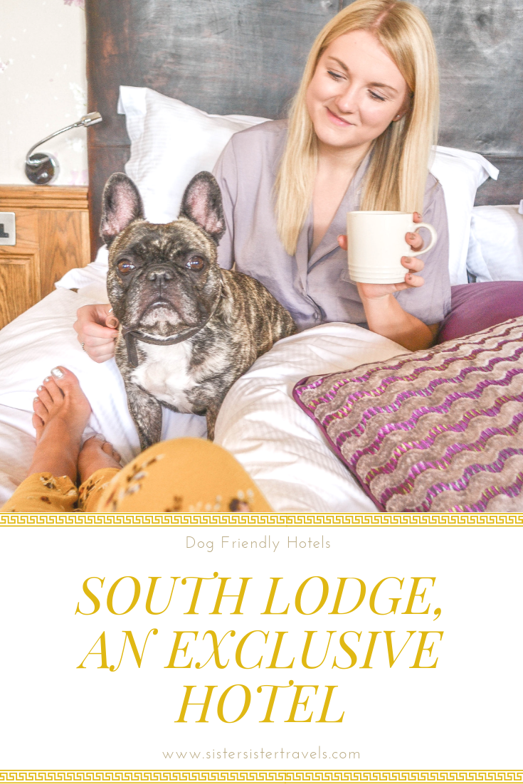 The First In Our Dog Friendly Hotels Series Where To Take Your Dog On Holiday What Hotels Allow Dogs Can Your Dog Friendly Hotels Dog Friends Travel Guides