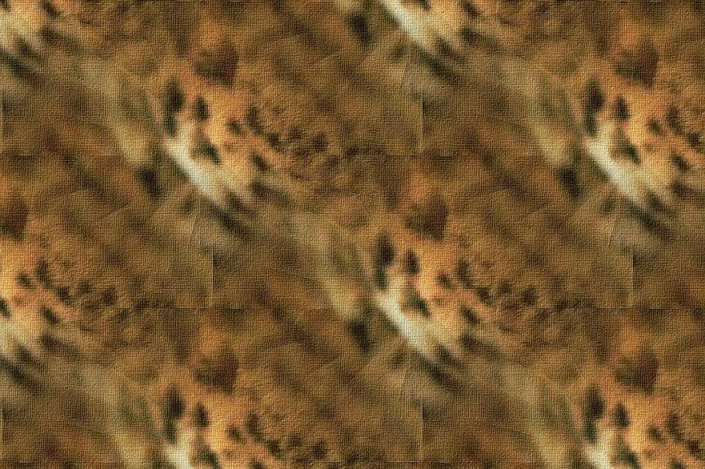 ZOOM DISEÑO Y FOTOGRAFIA: wallpapers,fondos con texturas animal print