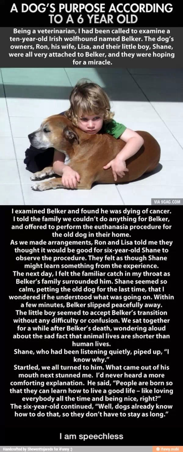 This is touching.