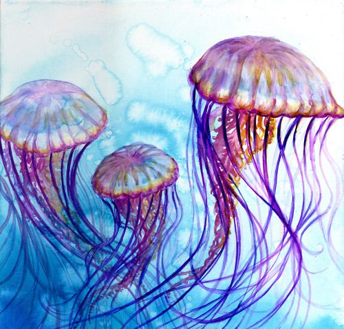 Watercolor Jellyfish | JellyFish Color My World ...