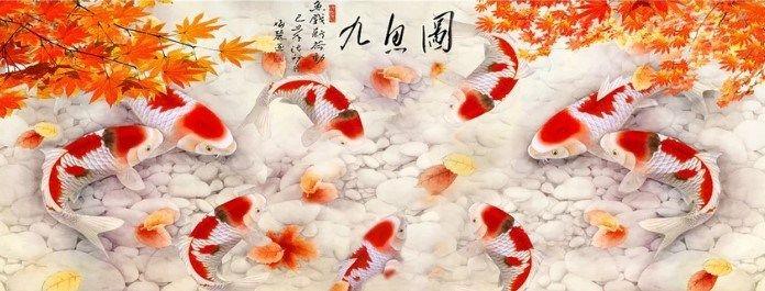 Page Not Found Giobel Koi Center Koi Farm Beautiful Japanese Koi Fish For Sale Philippines Koi Fish Koi Fish For Sale Fish For Sale
