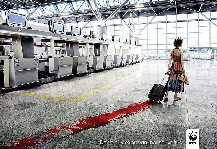 Dont' buy exotic animal souvenirs © WWF - uen femme traine un chariot avec une énorme tâche de sang sur le sol