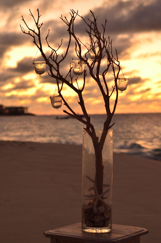 Meads Bay Sunset #DestinationWeddigs #BlackOrchidFlorists #BeyondFlowers #SimpleElegance #Weddings