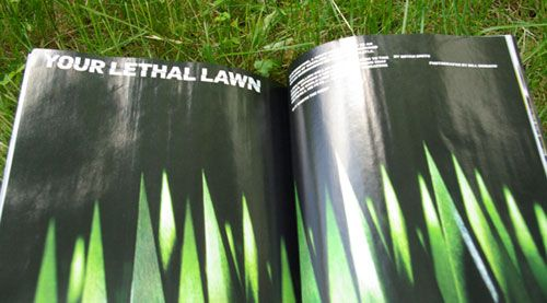 Organic Lawn Care Manual by Paul Tukey