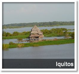 knows the city of Iquitos and enjoy a trip surrounded by nature.