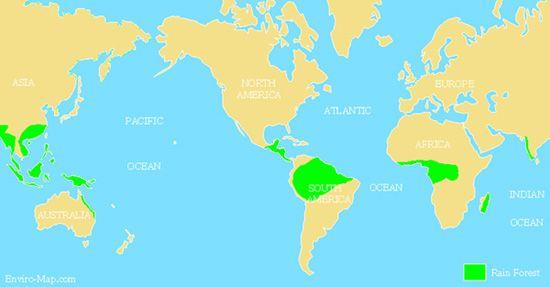 World's Tropical Rainforest Map