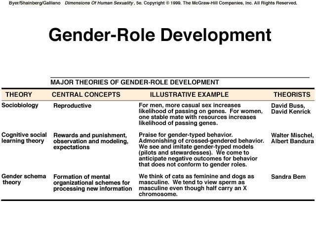 Social Learning Theory Cognitive Developmental Theory Gender