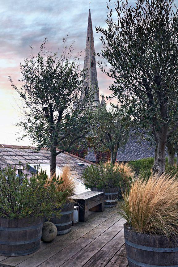 Un coin de paradis en plein cœur de Londres Terrazas, Jardín y Londres