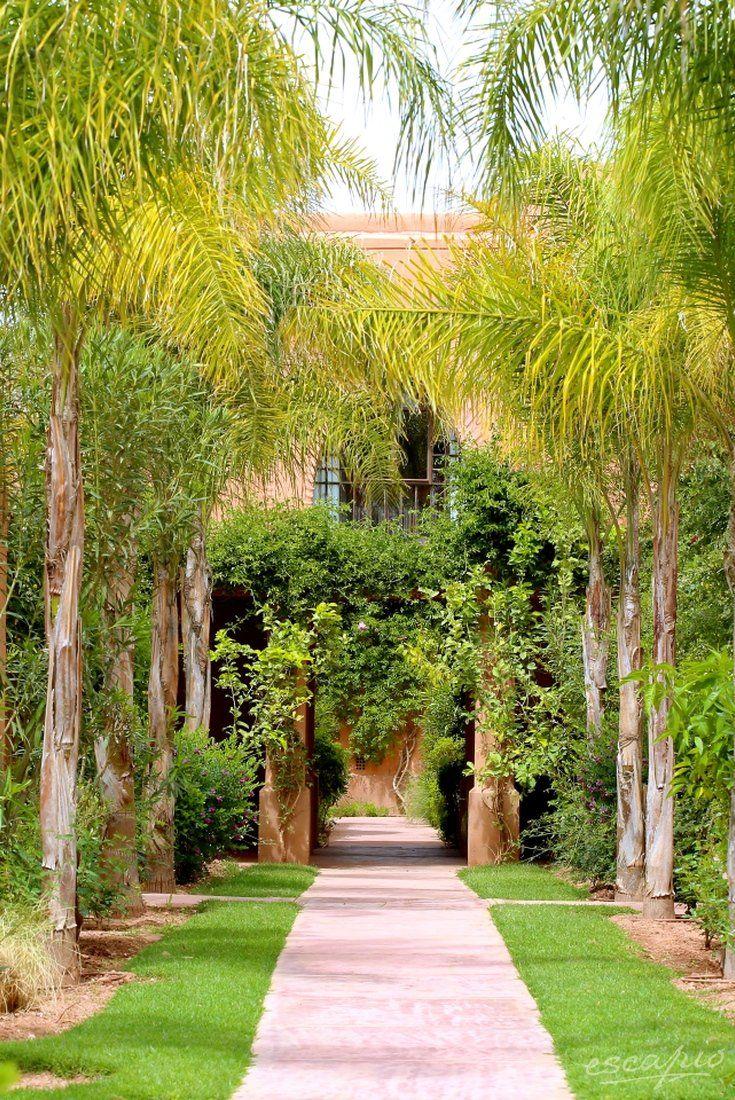 Palmen Im Garten Des Adama Reosrt Marrakech Marrakesch Marokko Palmenarten Pflanzen Garten