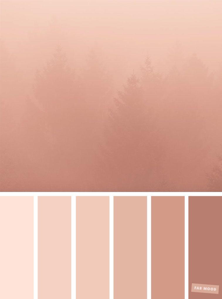 blush tones pretty blush color scheme colour palettes. Black Bedroom Furniture Sets. Home Design Ideas