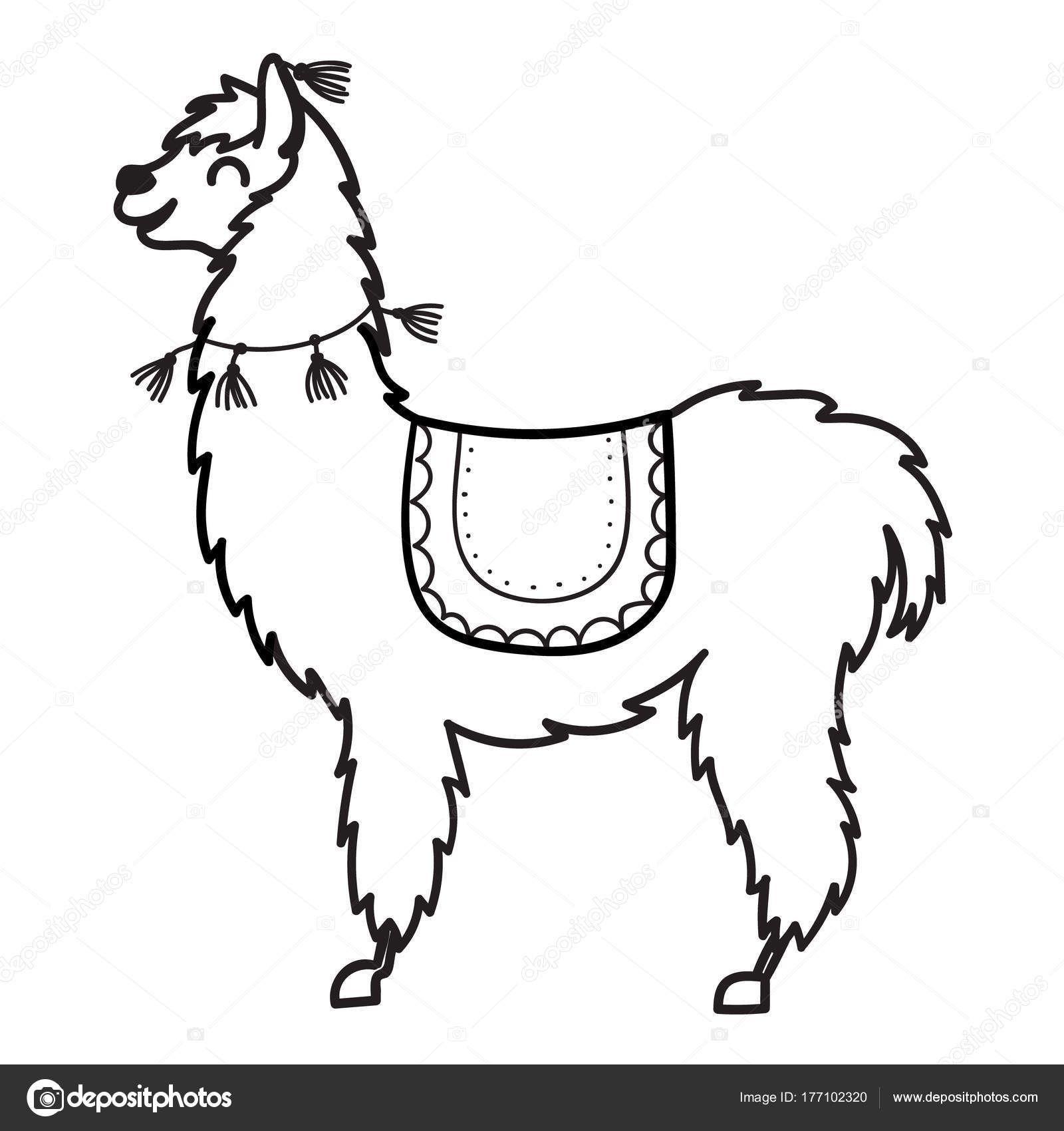 Dibujos De Llamas Y Vicuñas Para Colorear Buscar Con