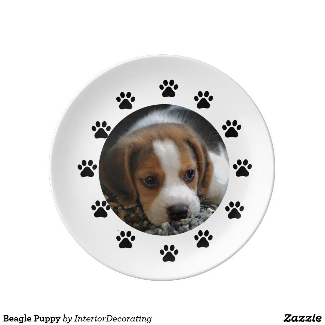 Beagle Puppy Dinner Plate Zazzle Com Beagle Puppy Beagle Puppies