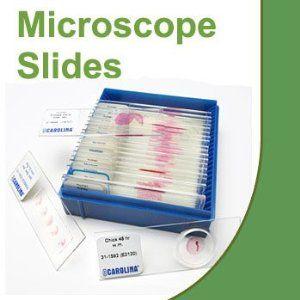 Human Spinal Cord Microscope Slide, c.s. - http://electmecameras.com/camera-photo-video/accessories/microscope-accessories/human-spinal-cord-microscope-slide-cs-com/