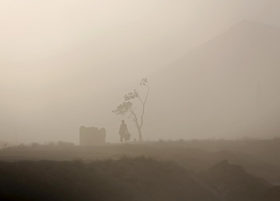 A man walks next to a tree during a dust storm in Kabul, Afghanistan August 20, 2015. REUTERS/Ahmad Masood