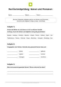 Arbeitsblatt: Rechtschreibpruefung Nomen und Pronomen | Homeschool