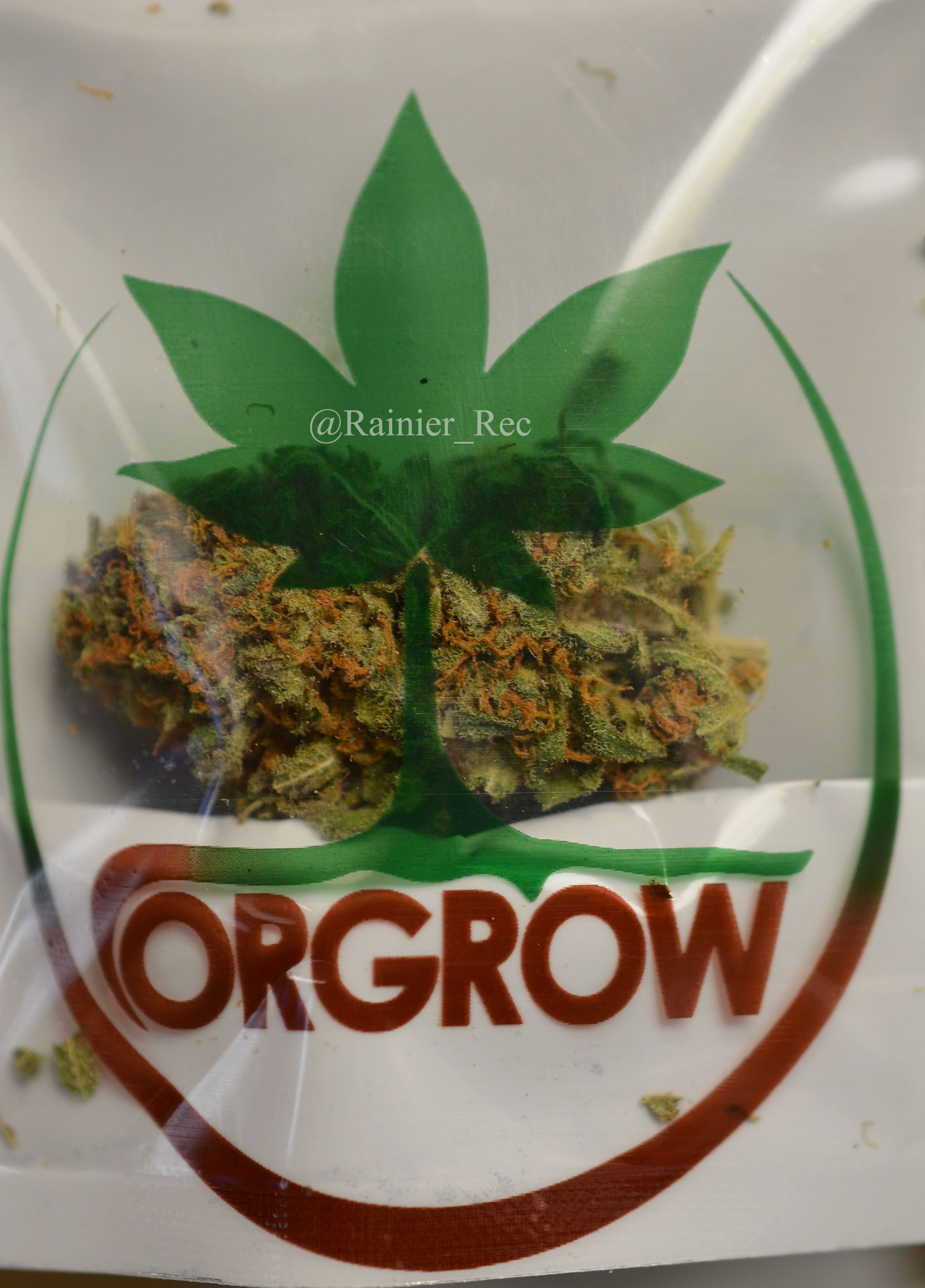 Closer look at some #highgrade #cannabis #legalweed #ExperienceRainier #RainieronPIne OG Critical Mass