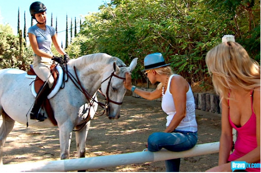 Bella Hadid Horse S 246 K P 229 Google People Pinterest