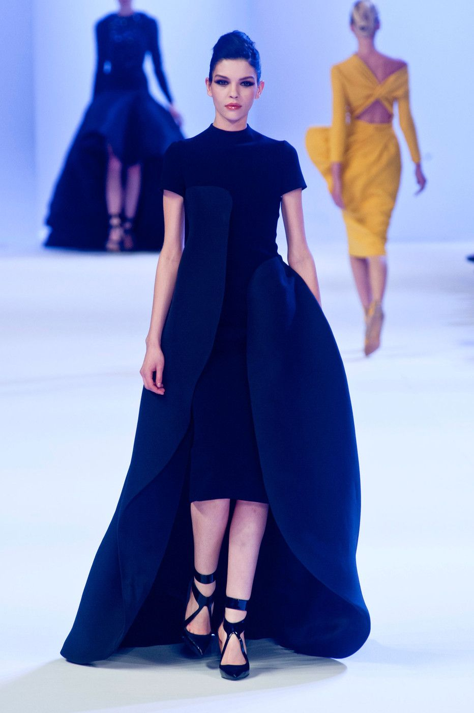 Stéphane Rolland at Couture Spring 2014 - StyleBistro
