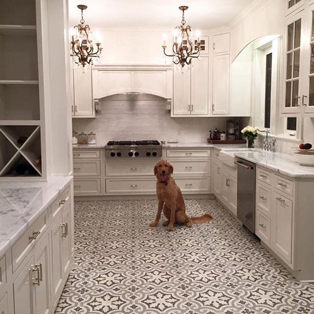 Cement Tile Shop Encaustic Cement Tile Kyra Ii Terrazzo Cement Tile Shop Cement Tile Cement Tile Floor