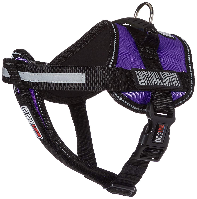 4ft Blue Nylon Pet Cat Doggie Puppy Dog Leash Lead Harness Collar Detachable