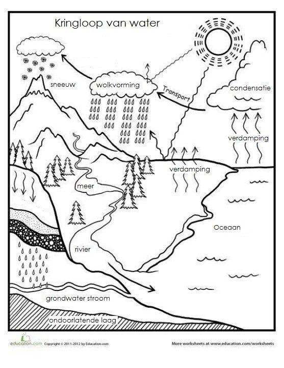 De kringloop van het water | 5th grade | Pinterest | Leon, Chemie ...