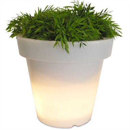 bloom verlichte plantenbak binnen en buiten