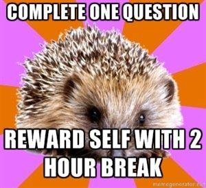 Homeschooled Hedgehog [ I used to do this all the time! ha ha ]