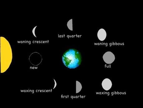 printable diagram of the phases of the moon   Phases of ...