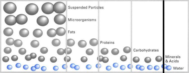 Reverse Osmosis Diagram Reverse Osmosis Pinterest