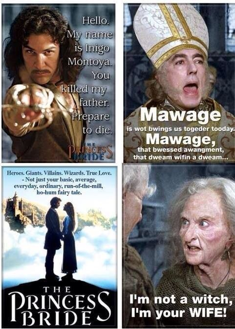The Princess Bride Now Waiting For A Remake Starring Chris Hemsworth As Wesley Anyone Agree Princess Bride Quotes Princess Bride Bride