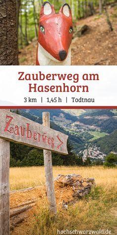 Zauberweg am Hasenhorn