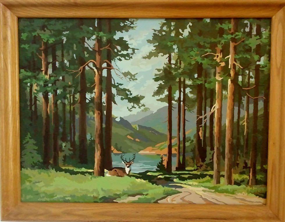 Deer Mountain Stream Paint By Numbers Painting Vintage Art