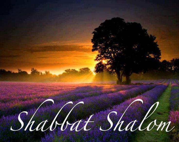 Image result for Shabbat Shalom pictures