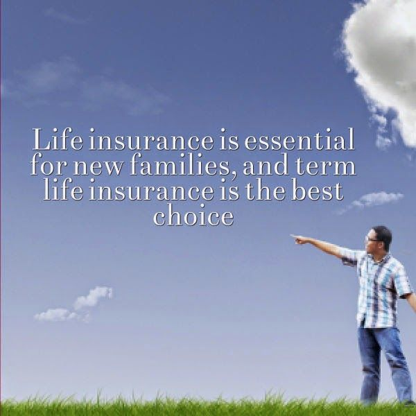 Term Life Insurance Quote Delectable Best Term Life Insurance Quotes  Life Insurance  Pinterest . Design Decoration