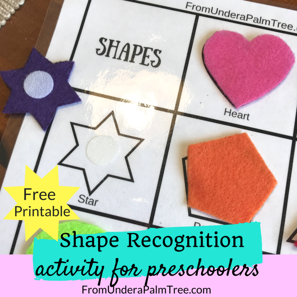 Shape Recognition Activity