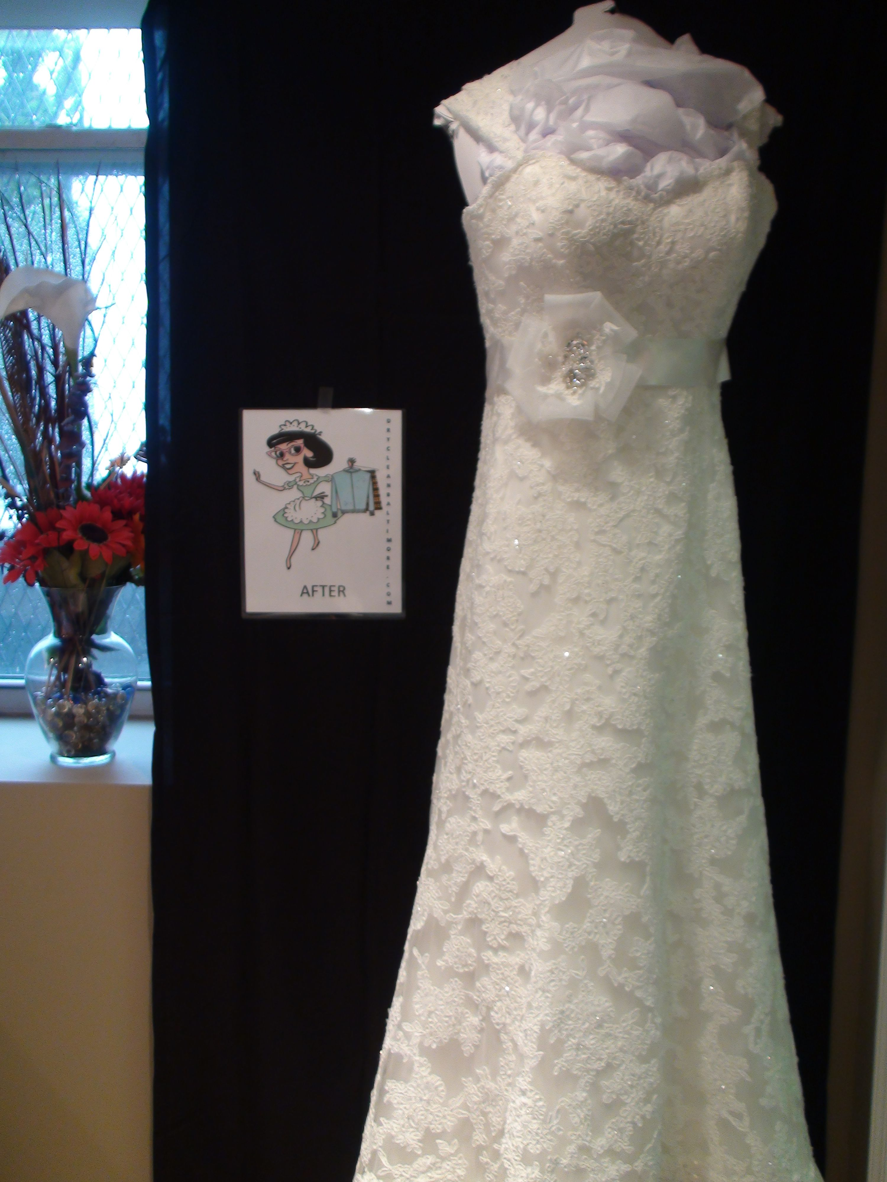 Wedding Gown Specialists by Schroedl Custom Cleaners- $35 Gift ...