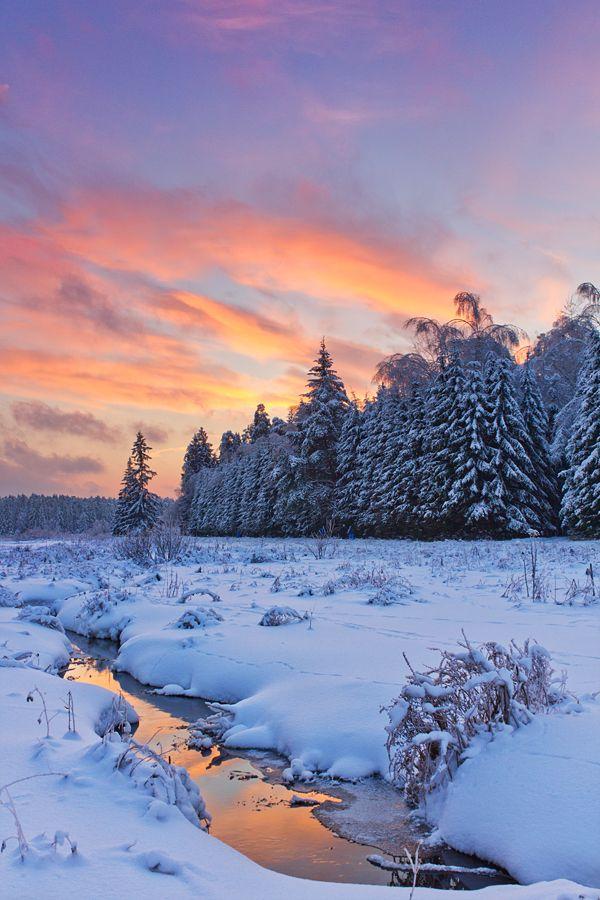 My Colourful Winter By Deingel On Deviantart Winter Scenery Winter Landscape Winter Scenes