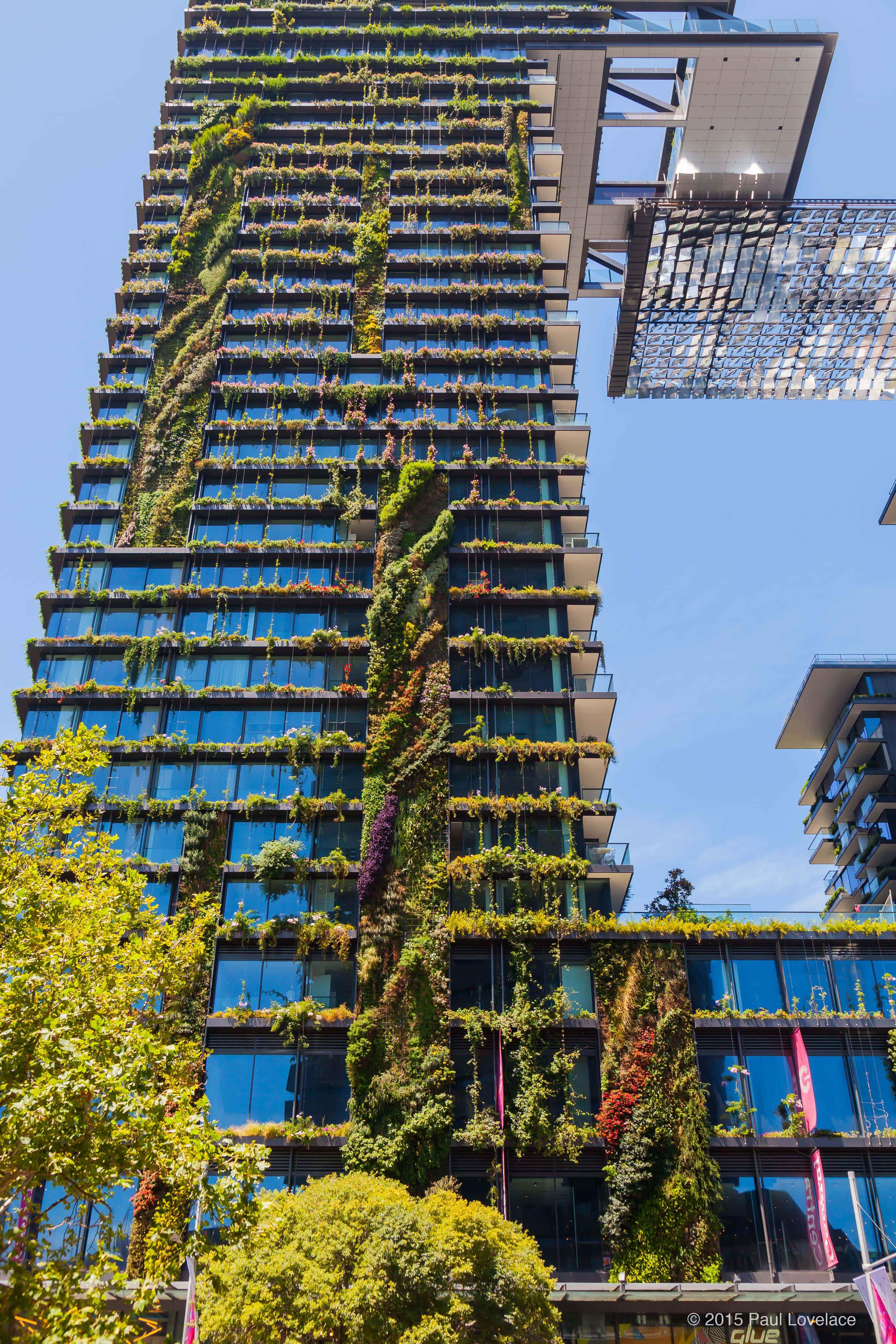 Central Park Heliostat Vertical Garden Backyard Landscaping Designs Luxury Garden
