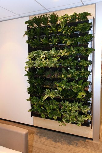 Breathe Living Walls By Dirtt With Images Garden Wall Decor
