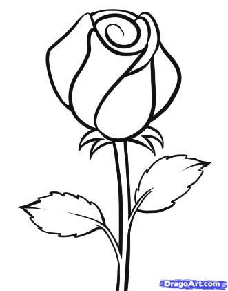 How To Draw An Easy Rose By Dawn Roses Drawing Easy Flower