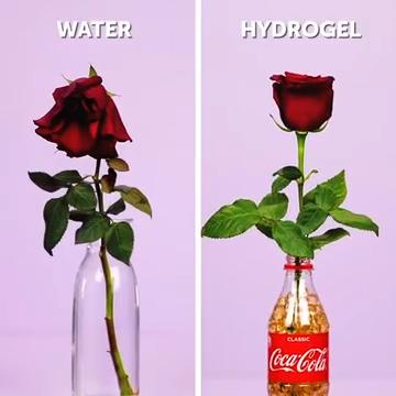 22 COCA COLA HACKS THAT WILL SHOCK YOU || Coca Cola Recipes, Tricks And Food Secrets #5minutecraftsvideos