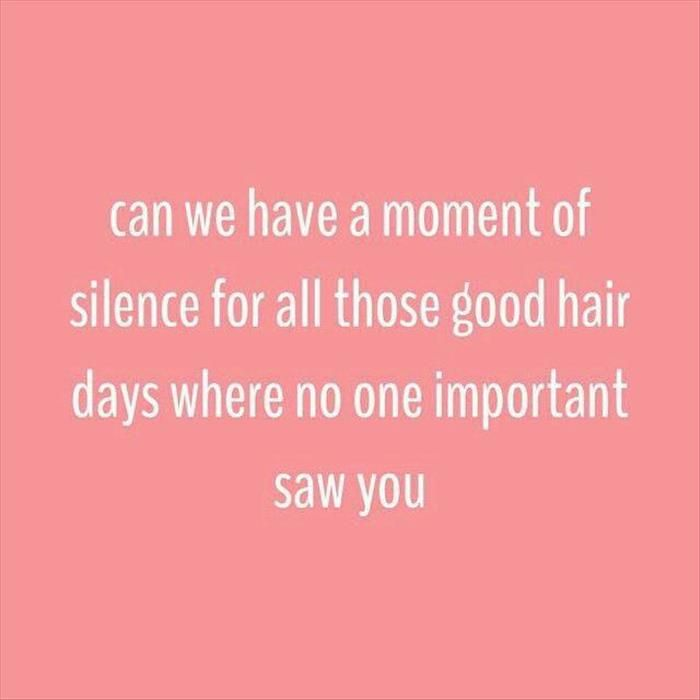 Funny Hair Quotes Funny Pictures Of The Day – 48 Pics | Laughter is the best  Funny Hair Quotes