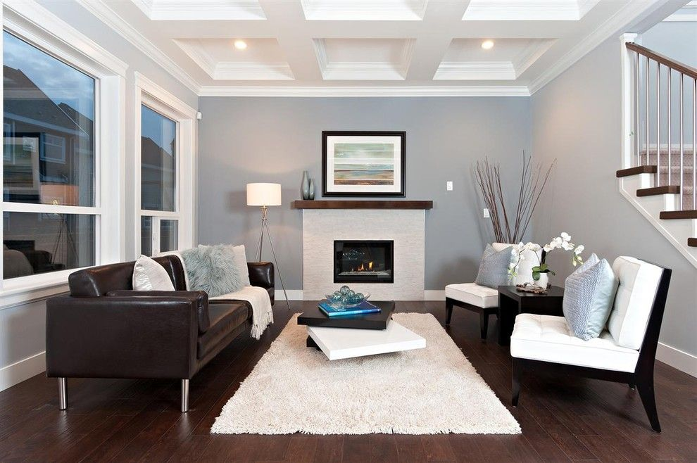 white shag rug in Living Room Contemporary with dark wood