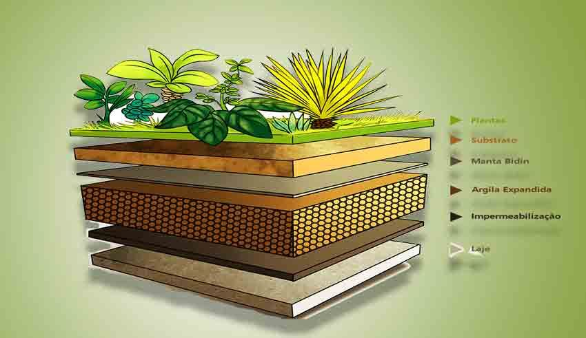 Know Everything About Green Roofs With Images