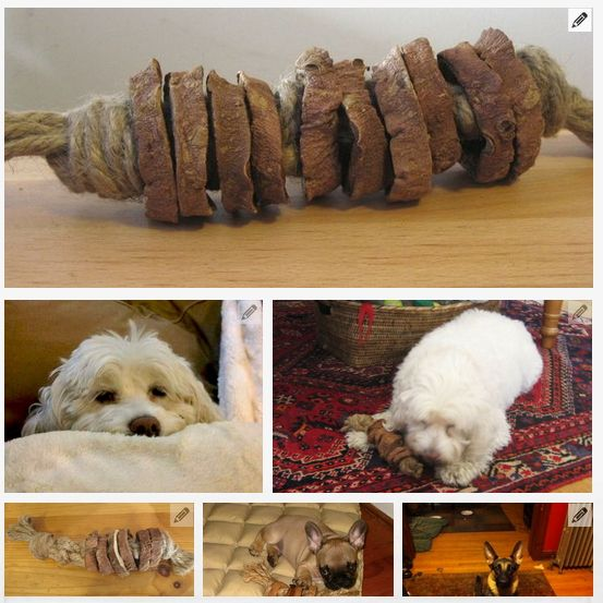 44 Really Cool Homemade Diy Dog Toys Your Dog Will Love In 2020 Diy Dog Toys Diy Dog Stuff Homemade Dog Toys