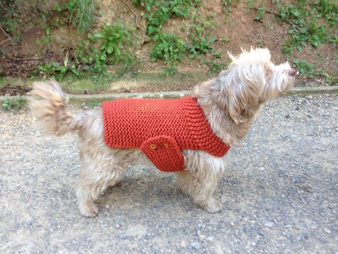 Tutorial abrigo jersey chaleco para perro tejido en telar | Tejido ...