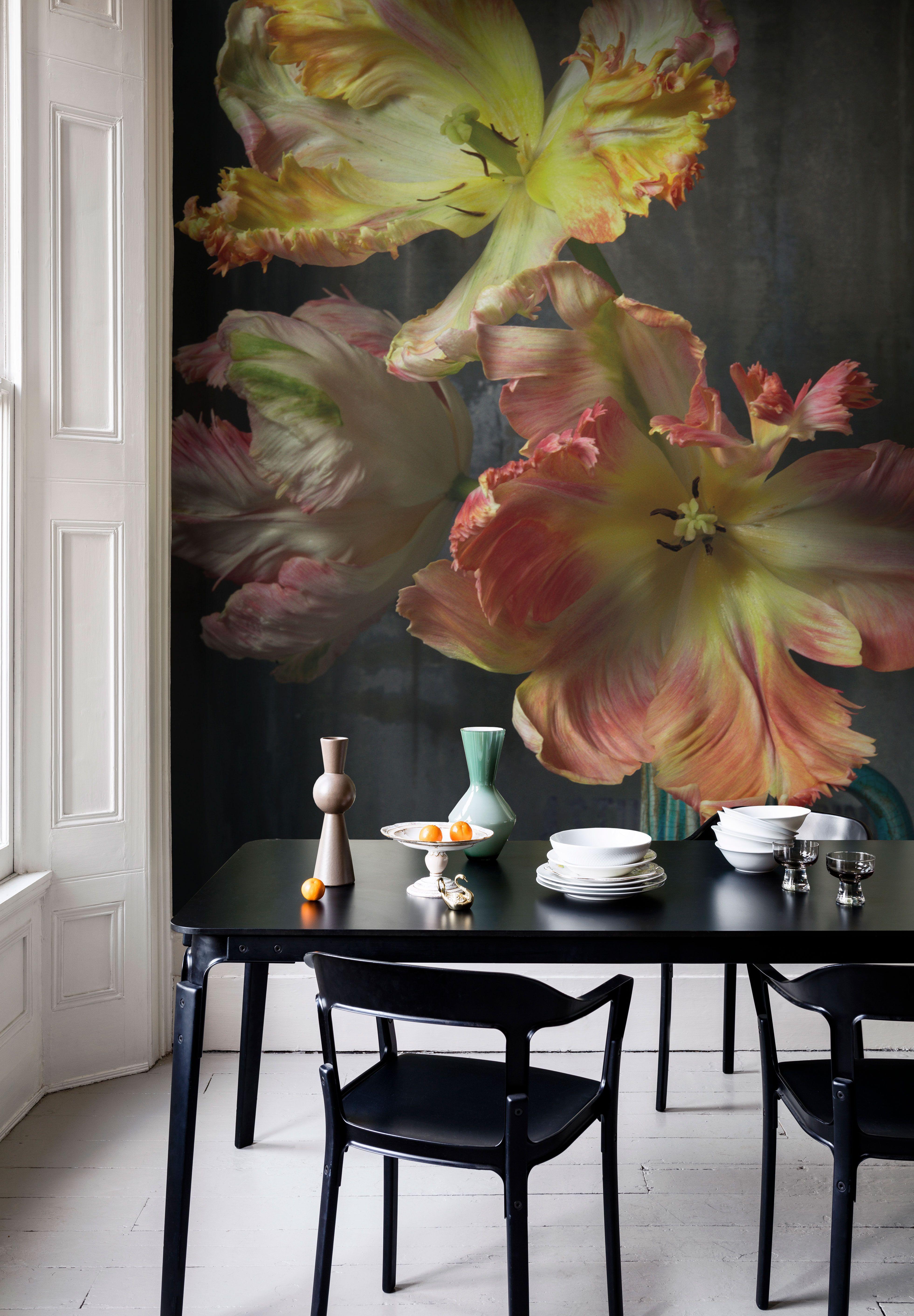 Bursting Flower Still Mural Trunk Archive Collection from £65 per sq WandverkleidungWandgestaltungStrukturierte WändeTapeten SchlafzimmerHaus