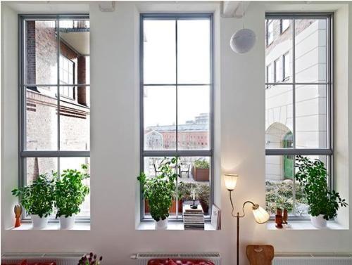 Inspirational House Windows Design Photos