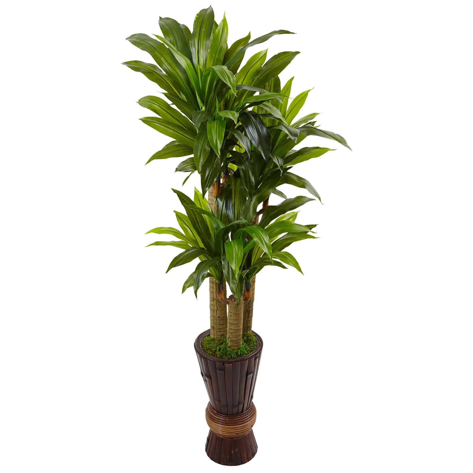 5 Cornstalk Dracaena Plant In Wooden Planter Nearly Natural Artificial Foliage Dracaena Plant Small Artificial Plants