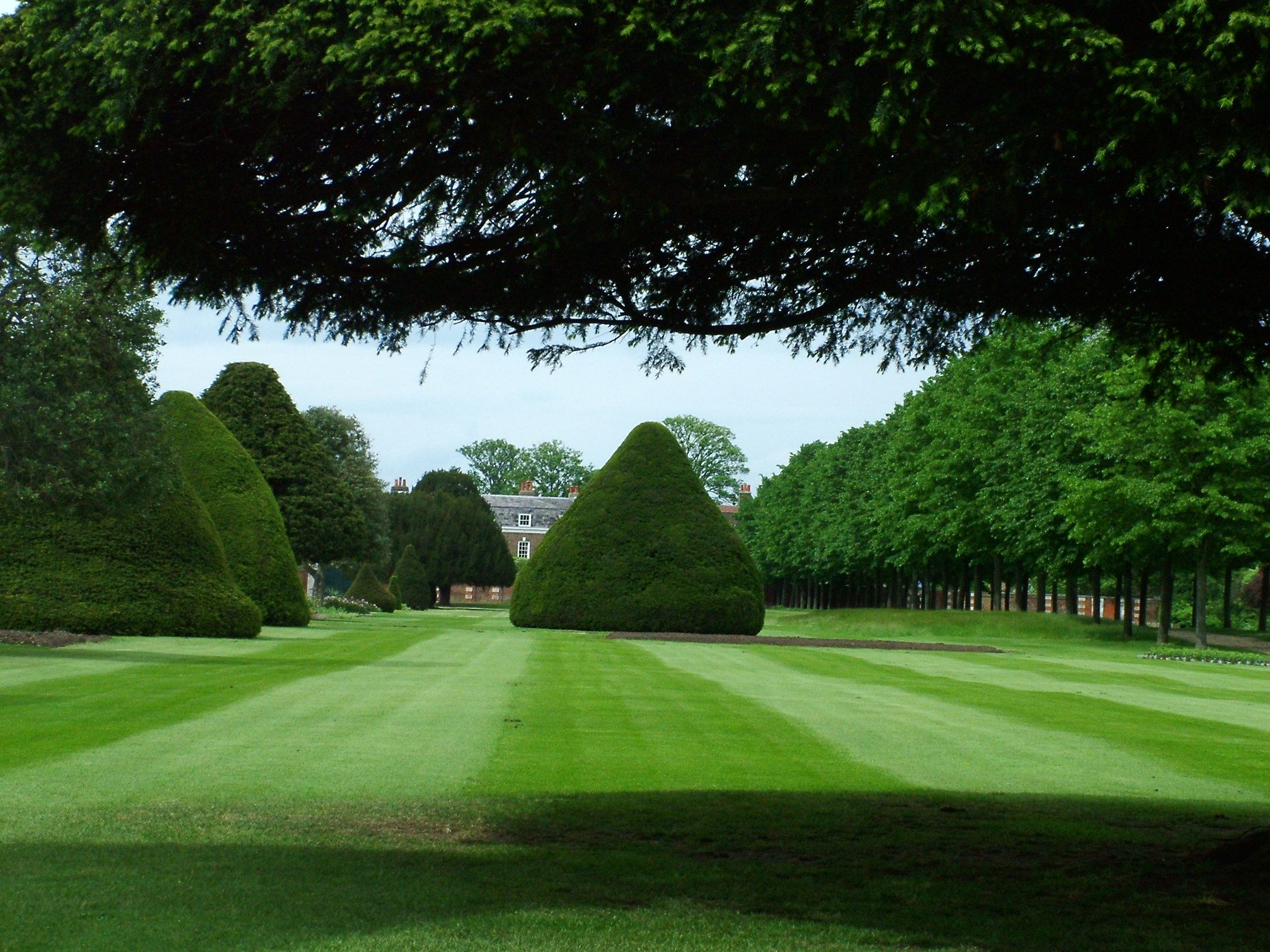 London garden beautiful lawn The Cordelle